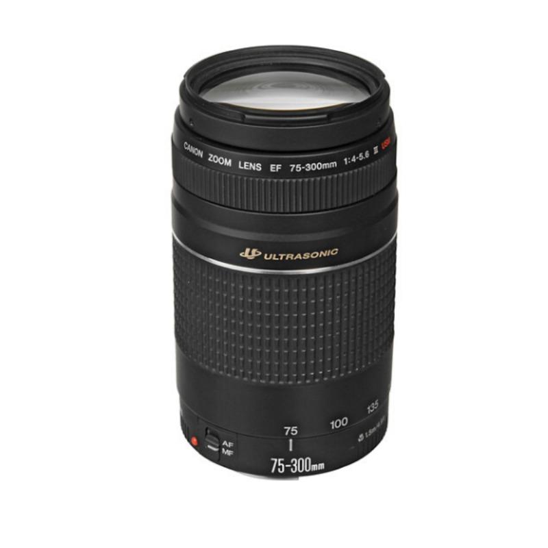 Canon EF 75-300mm f/4-5.6 III USM Lens4